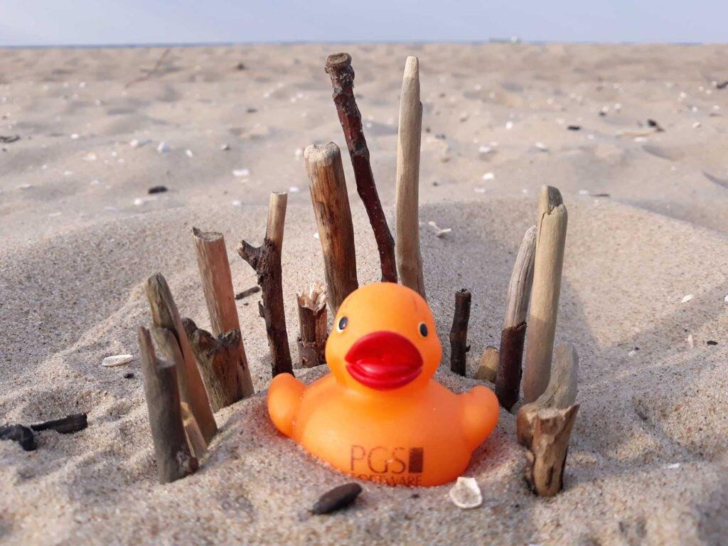 PGS-owa kaczka Nancy na piasku otoczona parawanem ułożonym z małych patyczków.